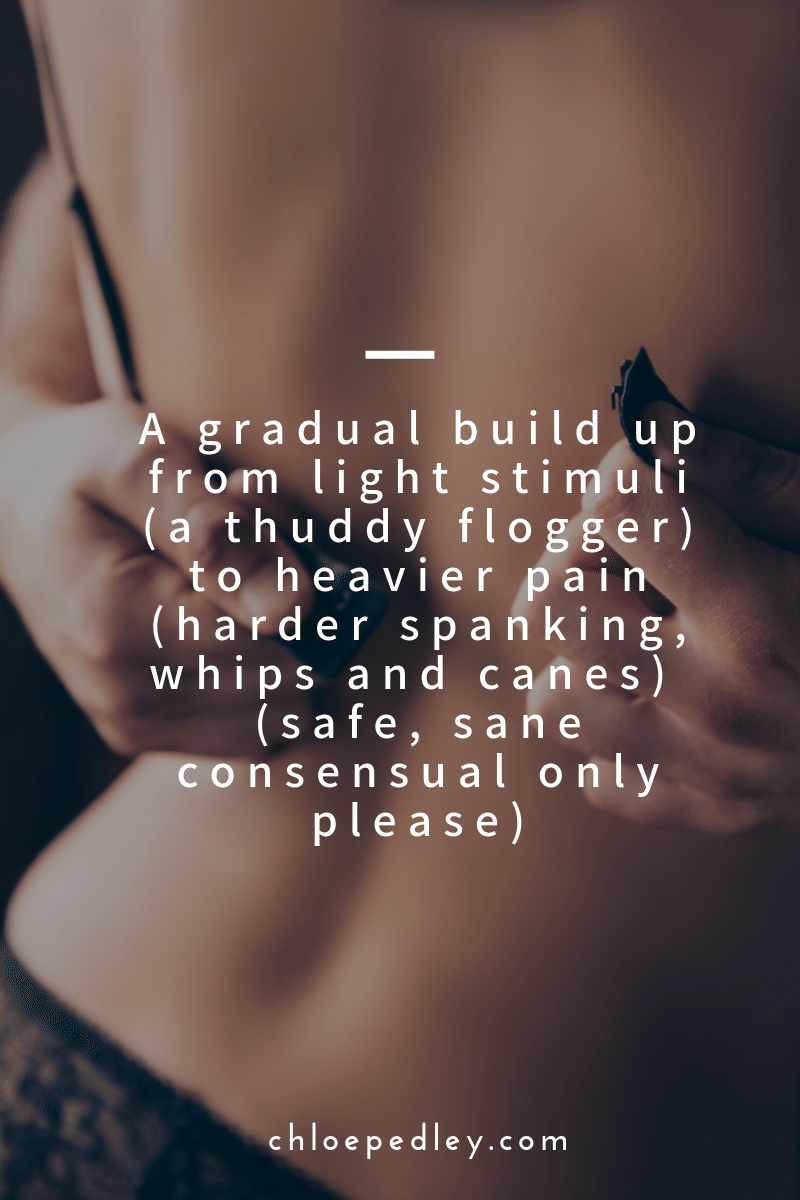 A gradual build up from light stimuli (a thuddy flogger) to heavier pain (harder spanking, whips and canes)  (safe, sane consensual only please)